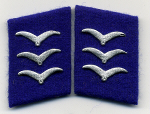 luftwaffe kragenspiegel sanittskorps obergefreiter collar tabs on cornflower blue underlay