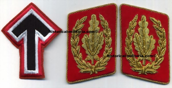 Kragenspiegel SA-Stabschef collar tabs ( leader of SA grouping ) + Tyr Rune Insignia patch - Mostrine da Stabschef-SA Colonnelllo Generale delle SA con distintivo TYR